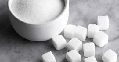 sugar utilization